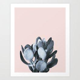 Cactus collection BL-II Art Print