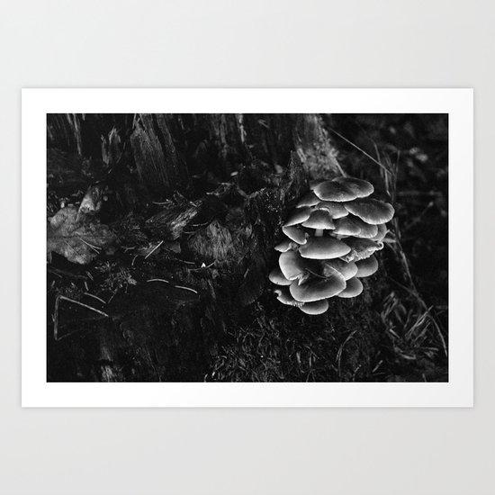 Mushroom tree Art Print