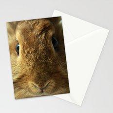 Little Rabbit. Stationery Cards