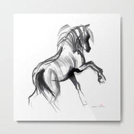 Wild horse (Bachelor) Metal Print