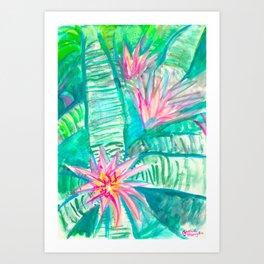 Pink Flowering Bromeliad Art Print