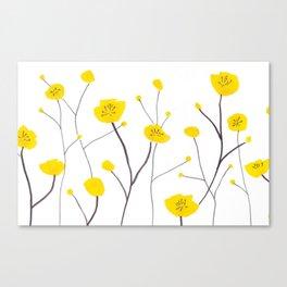 Buttercups Canvas Print