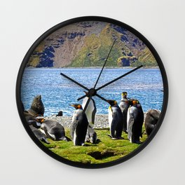 King Penguins and Fur Seals Wall Clock