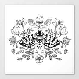 Moth with Berries and Rosehip Canvas Print
