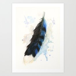 Watercolor Blue Jay Feather Art Print