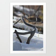 New Mexico Snow  Art Print