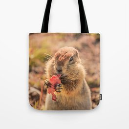 Have a smile for breakfast Tote Bag