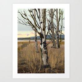 Conboy Lake Art Print