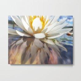 Lotus on lake Metal Print