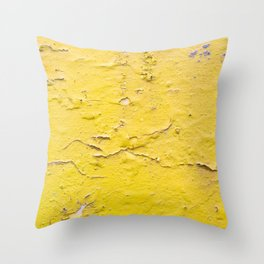 The wall of the previous day Throw Pillow