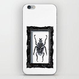 Goliath Beetle iPhone Skin
