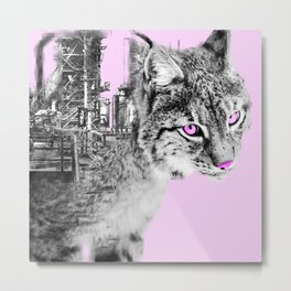 Pink eyed lynx Metal Print