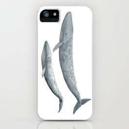Blue whales (Balaenoptera musculus) - Blue whale iPhone Case