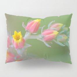 Flowering Cactus Pillow Sham