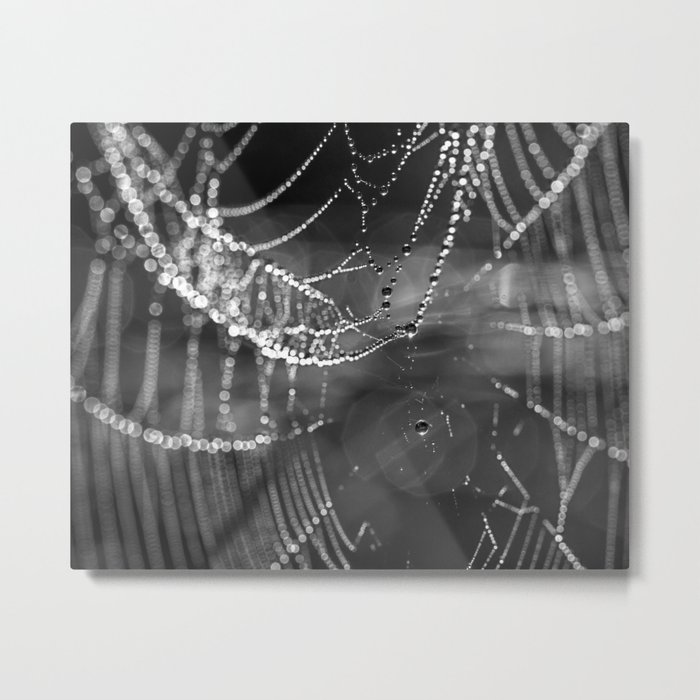 silver beads Metal Print