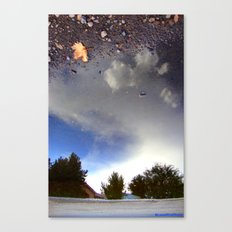 Starry Earth Canvas Print