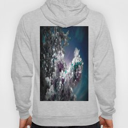 Flowers Purple & Teal Hoody
