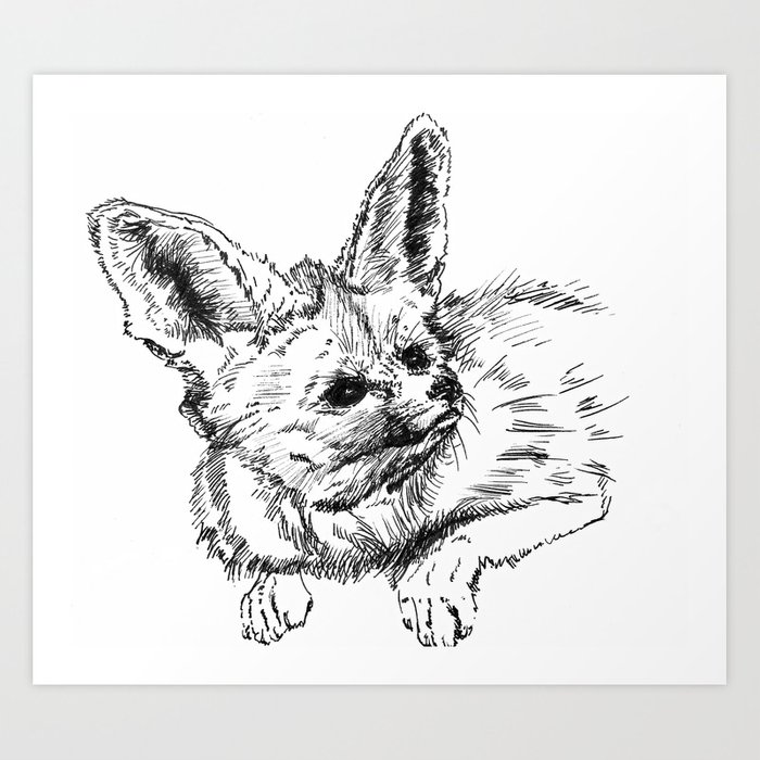 Fennec Fox Cute Animal Print Wall Decor Wall Art Black And