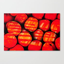 Fruits and berrys IV Canvas Print