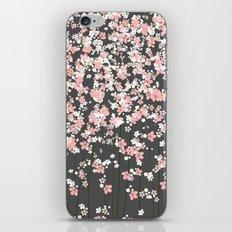 Black background Pink Shidare Zakura iPhone & iPod Skin