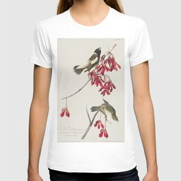 Cuviers Kinglet from Birds of America (1827) by John James Audubon etched by William Home Lizars T-shirt