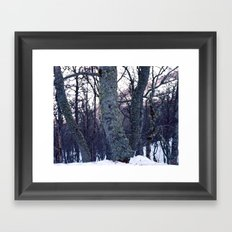 feel tree Framed Art Print