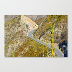 Serpentine Curve Canvas Print