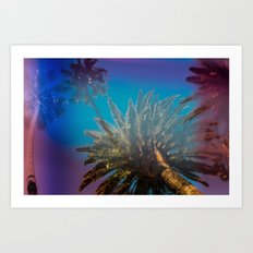Blue Sky and Palm Trees Art Print