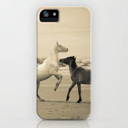 Wild Horses 2 iPhone Case