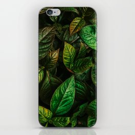 Golden Green Leaves iPhone Skin
