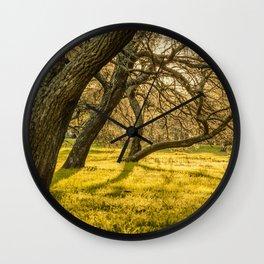 Prado Park, Montevideo, Uruguay Wall Clock