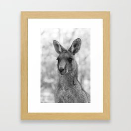 Miss Kanga Framed Art Print