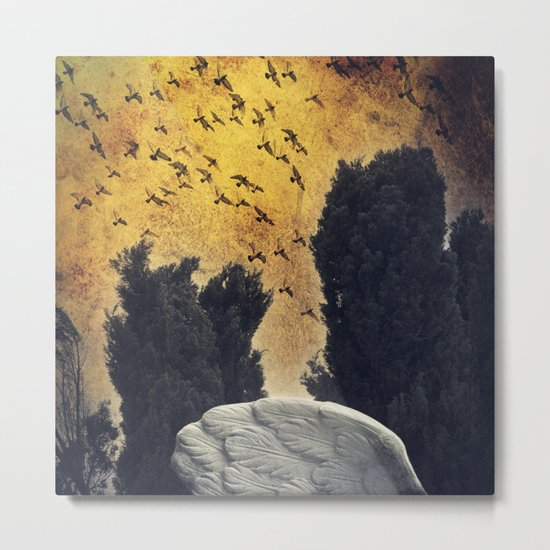 Wings - a fantasy Metal Print