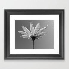 Lit Daisy Framed Art Print