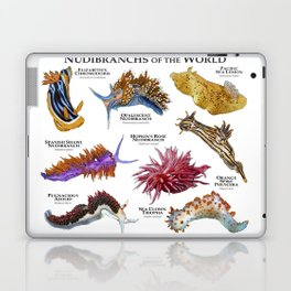 Nudibranchs of the World Laptop & iPad Skin