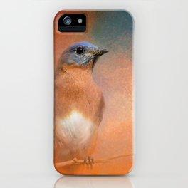 Summer Day Bluebird - Wildlife iPhone Case