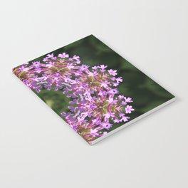 Constellation of Verbena flowers mandala Verbena bonariensis 1829 k2 Notebook