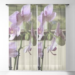 The Artful Orchid Sheer Curtain