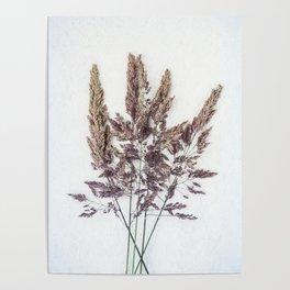 Velvet Grass Poster