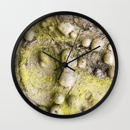 Tree Bark Close up with Burl Growth Wall Clock