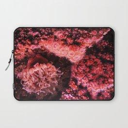 Marine Photography Laptop Sleeve