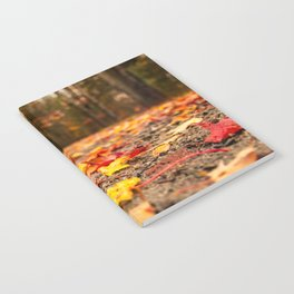 Fall on the Road Notebook