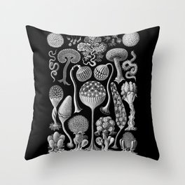Slime Molds (Mycetozoa) by Ernst Haeckel Throw Pillow