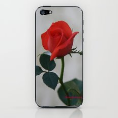 UNTOUCHED BEAUTY iPhone & iPod Skin
