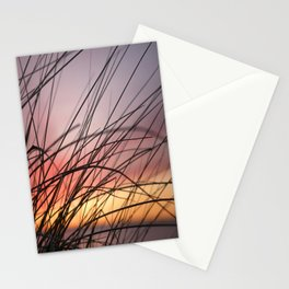Grasses in the rainbow light of sunset Stationery Cards