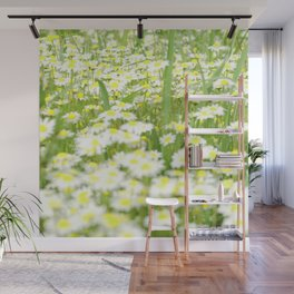 Field of daisies Wall Mural