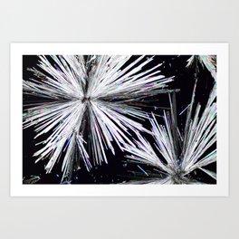 Cadmium Chloride Crystals Art Print