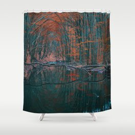 Romanian forest in autumn Shower Curtain