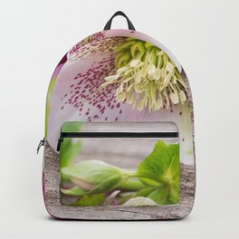 Gifts from the Garden Backpack