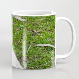 Eastern Long Billed Corella Coffee Mug